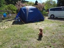楽園管理人アツシの絵日記-犬連れで、いっしょに宿泊、同伴キャンプ05