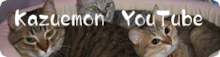 $ 『私の猫part2』                         ☆佐藤和津恵☆          (和枝)-YouTube