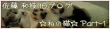 $ 『私の猫part2』                         ☆佐藤和津恵☆          (和枝)-part-1