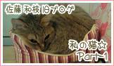 『私の猫part2』                         ☆佐藤和津恵☆          (和枝)-part-1 162