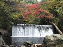 軽キャンパーファンに捧ぐ 軽キャン◎得情報-花園渓谷紅葉