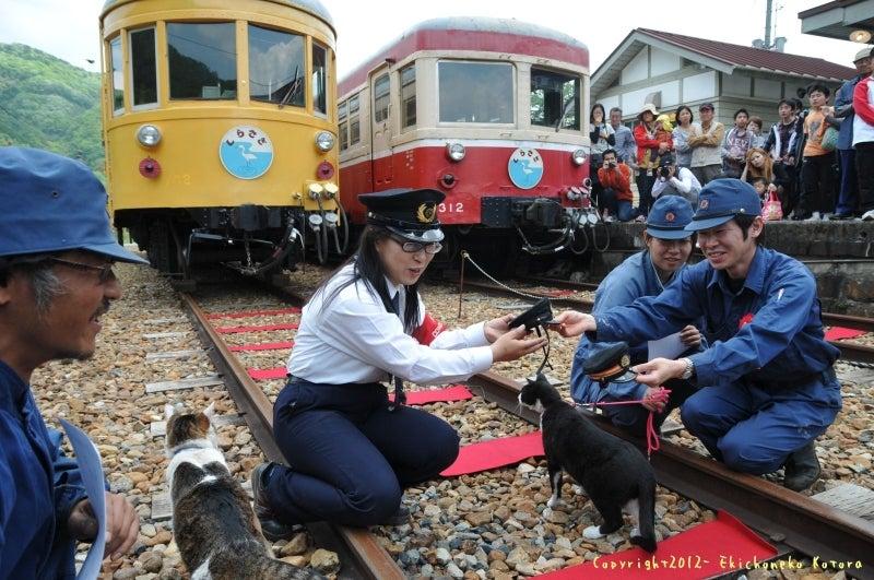 駅長猫コトラの独り言~旧 片上鉄道 吉ヶ原駅勤務~-帽子を交換や