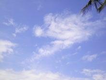 バリ島 Ubud おさかな日記