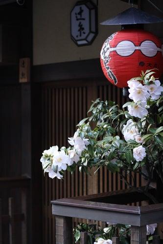 YOKO'S PHOTO DIARY-KYOTO015