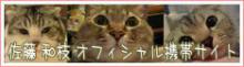 『私の猫part2』                         ☆佐藤和津恵☆          (和枝)-Mobile