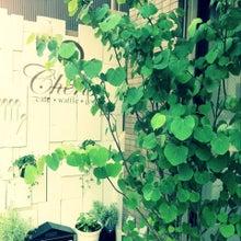 $Cherish & Life☆-ipodfile.jpg
