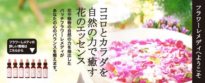 $flower-remedy-emiのブログ