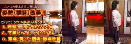 西東京市ひばりヶ丘駅の整体のスタイル、アンチエイジング、猫背、冷え姿勢改善