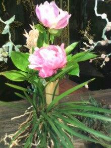 春風秋月のブログ-120516_1141~01.jpg