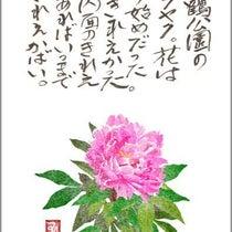 彼岸花描き方 つねゴンの花絵画 はがき絵 絵手紙 花イラスト