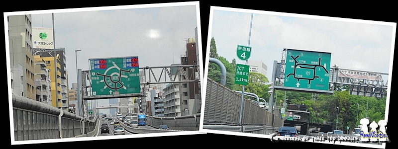 トイプードル 3ぷ~の週末 Ⅱ
