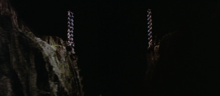 三角絞めでつかまえて-崖の両端から倒れると...