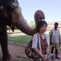 南インドで象の鼻息