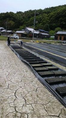 $まきブロ ★石黒農園の毎日★-2012051914100002.jpg