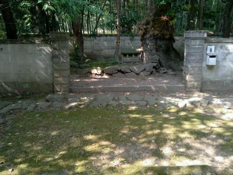 道子のシンプル神社道