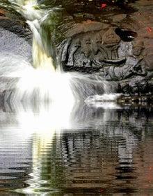 $カンボジア ガイドローズのブログ-ipodfile.jpg
