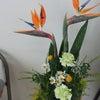デイサービスの花の画像