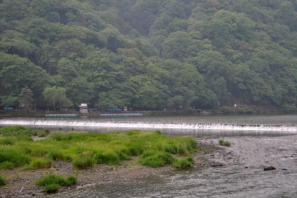 茶々吉とデジ一 のんびり旅-120525_桂川