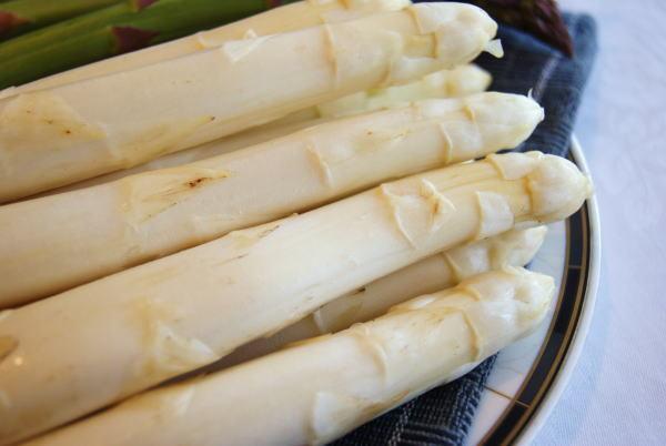 食べて飲んで観て読んだコト+レストラン・カザマ-安平町産ホワイトアスパラガス