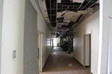 新宿ではたらくサイコロ社長(セミナー企画・アロマサロン経営・ITエンジニアリング)-被災地鯉のぼり@南三陸町・名足小学校⑫