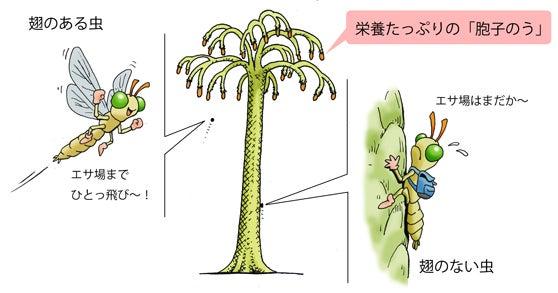 川崎悟司 オフィシャルブログ 古世界の住人 Powered by Ameba-胞子を求めて