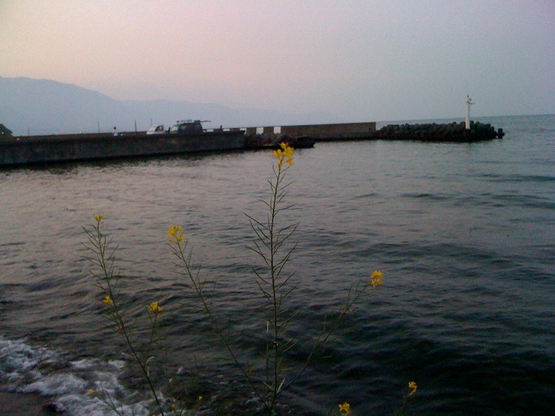 おまけ道@琵琶湖畔で実家生活♪ポテチンっ♪-??.jpg