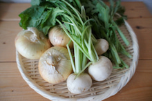 RENのブログ-野菜