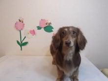 Jewel's cut Gardenのブログ