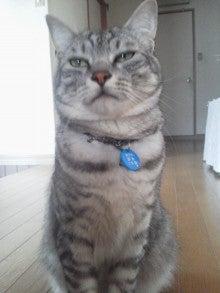 マリへーのモゥモゥ日記-2012052709060001.jpg