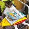 『猫ちゃんのお昼寝♡』^〜^♪の画像