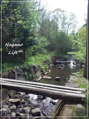 Nagano Life**-自然