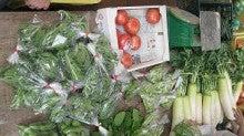 EMあんしん野菜の良さを伝えるページ-夏野菜
