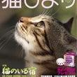 猫びより7月号発売!