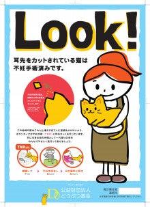 みまもり猫のブログ