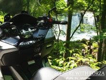 ビッグスクーターに乗りたくて-blog2022