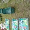 緑のカ-テンの画像