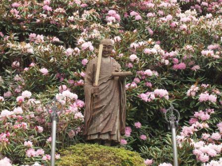 秋田犬カイの日常-横峰寺5