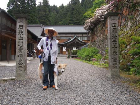 秋田犬カイの日常-横峰寺7