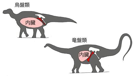 植物食恐竜の王者 | 川崎悟司 オ...