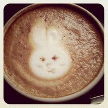 $琥珀色の魔法 代官山のコーヒーカフェMochaxana(モカザナ)