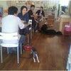 犬のしつけ 合同訓練 前橋教室(ソレイユ)の画像