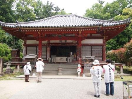秋田犬カイの日常-大興寺2
