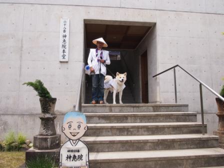 秋田犬カイの日常-神恵院2