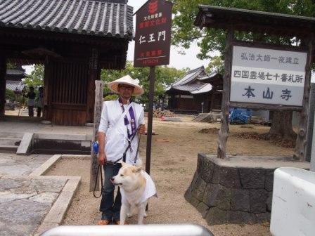 秋田犬カイの日常-本山寺4