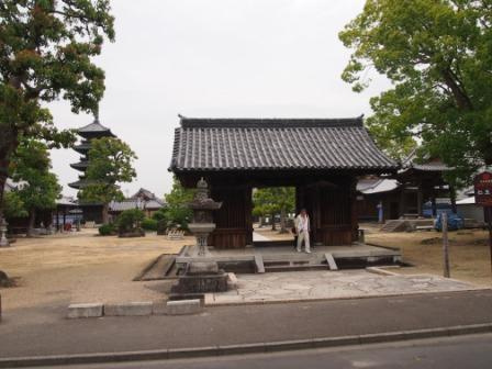秋田犬カイの日常-本山寺5