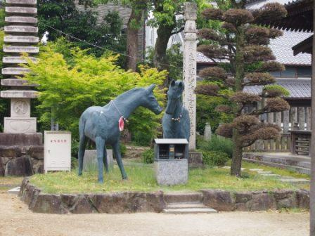 秋田犬カイの日常-本山寺3