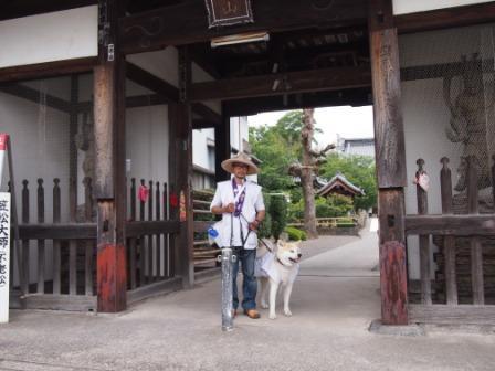 $秋田犬カイの日常-曼荼羅寺3