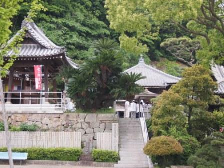 秋田犬カイの日常-甲山寺1