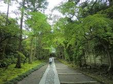 $松尾祐孝の音楽塾&作曲塾~音楽家・作曲家を夢見る貴方へ~-寿福寺の山門をくぐると・・・