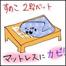 すのこタイプ2段ベッドでもお布団・マットレスはカビました。 | 2段